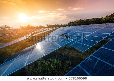 Zonne-boerderij zonnepanelen 3d render technologie Blauw boerderij Stockfoto © fresh_7135215
