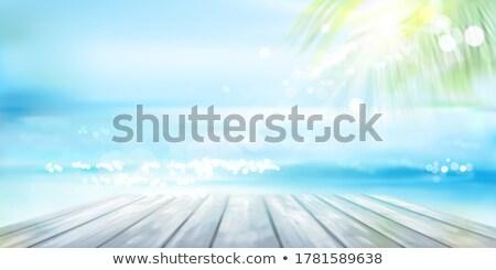 Csónak fa móló Cancun trópusi Karib Stock fotó © lunamarina