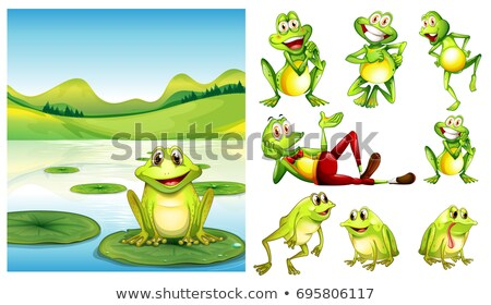 Jelenet béka tavacska egyéb betűk illusztráció Stock fotó © colematt