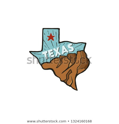 Vintage hand drawn Texas badge state badge, United States. Flat style icon, logo. Featuring mountain Stock photo © JeksonGraphics