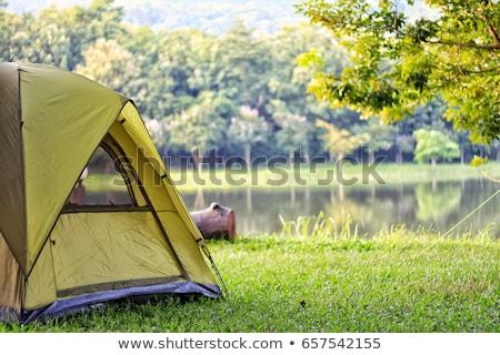 Kempingezés sátor erdő fák kék piros Stock fotó © colematt