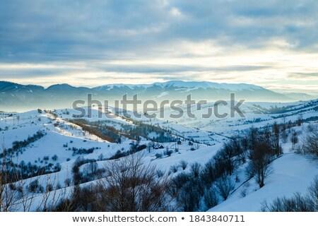 горные · Top · снега · облака · деревья - Сток-фото © unkreatives