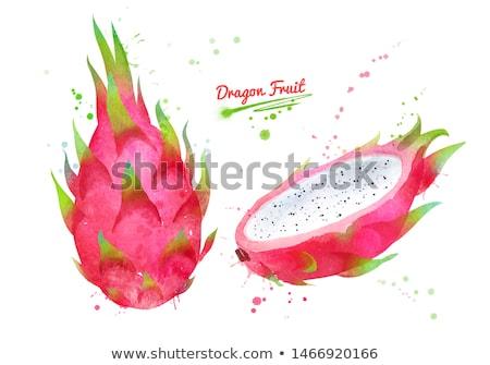 Ejderha meyve kırmızı suluboya örnek boya Stok fotoğraf © ConceptCafe