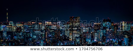 Night skyline of Tokyo city from a skyscraper. Stock photo © alphaspirit
