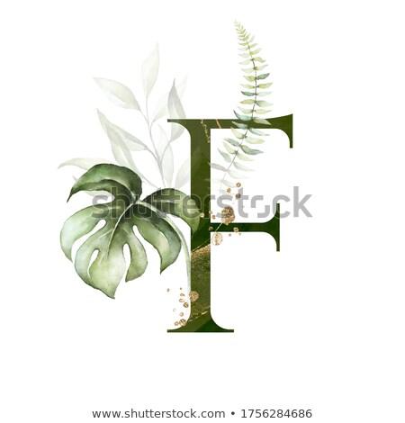 アルファベット リテラシー カード 花 ストックフォト © colematt