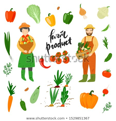 farming woman holding basket with fruits vector stock photo © robuart