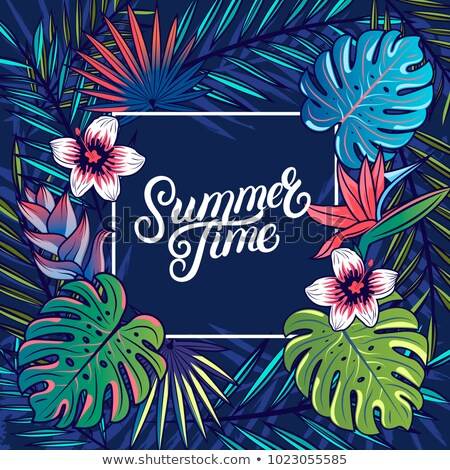 summer time illustration with typography letter and tropical plants on ocean blue background vector stock photo © articular