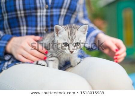 Jonge vrouw ontspannen buitenshuis huisdier kat Stockfoto © Giulio_Fornasar