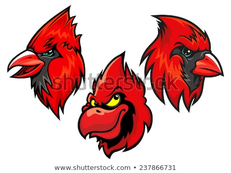 cardinal bird head mascot stock photo © patrimonio