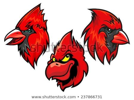 Cardinal Bird Head Mascot Stock photo © patrimonio