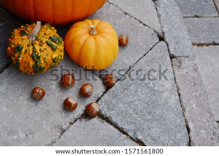 Ornamental gourds and hazelnuts as fall decorations on a stone s Stock photo © sarahdoow