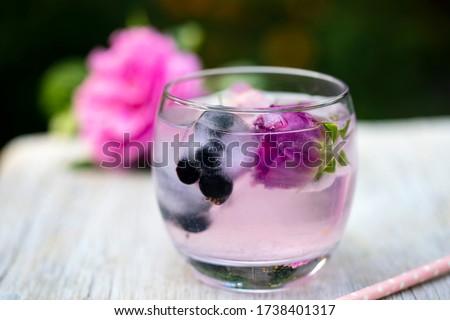 bevroren · bloemen · bloesems · Ice · Cube · ontwerp · kleur - stockfoto © joannawnuk