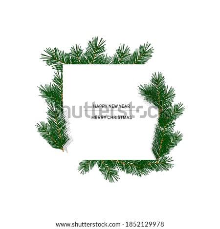 Rahmen Fichte Zweig Baum Text weiß Stock foto © popaukropa