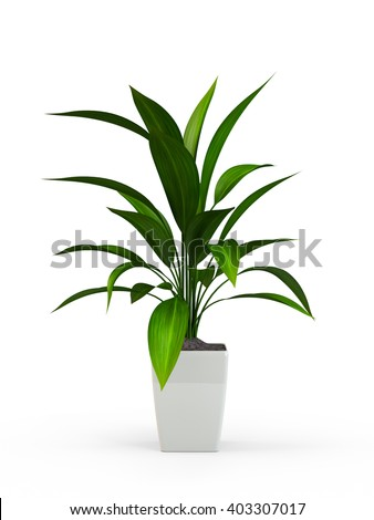 Office potted flowering tree isolated on white background. Vector cartoon close-up illustration. Stock photo © Lady-Luck