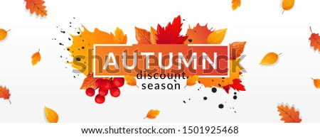 Autumn Sale. Fall season sale and discounts banner, vector illustration. Autumn, fall leaves, hot st Stock photo © ikopylov