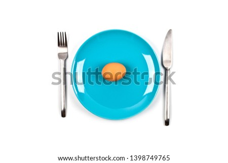 Vers kip Blauw plaat vork Stockfoto © marylooo