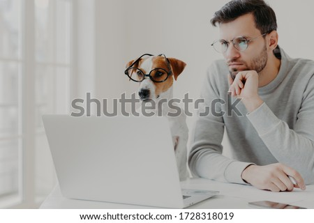 Serious concentrated male freelancer poses in coworking space together with jack russell terrier dog Stock photo © vkstudio