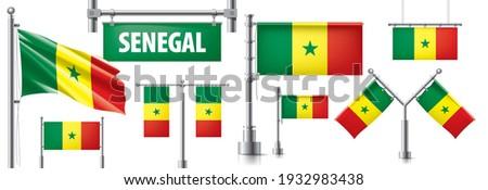 Vektor szett zászló Szenegál különböző kreatív Stock fotó © butenkow