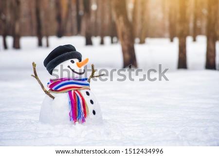 Kış harikalar diyarı komik gülen kardan adam park Stok fotoğraf © galitskaya
