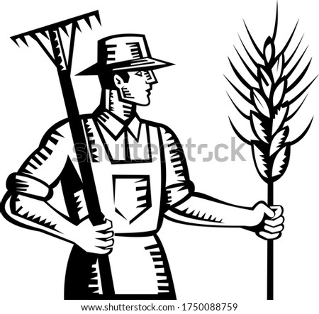 Wheat Farmer Holding a Rake and Cereal Grain Stalk Retro Woodcut Stock photo © patrimonio