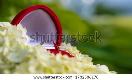 Altın alyans çiçekler bo metin davetiye Stok fotoğraf © cobaltstock