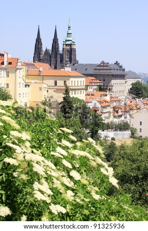 view on the spring prague gothic castle and old town czech repu stock photo © capturelight