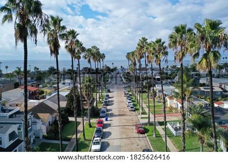 Belo ver costa San Diego árvores grama Foto stock © meinzahn