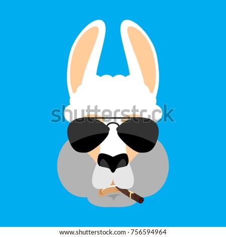 Cool Lama Alpaca serious face avatar. Animal smoking cigar emoji Stock photo © popaukropa
