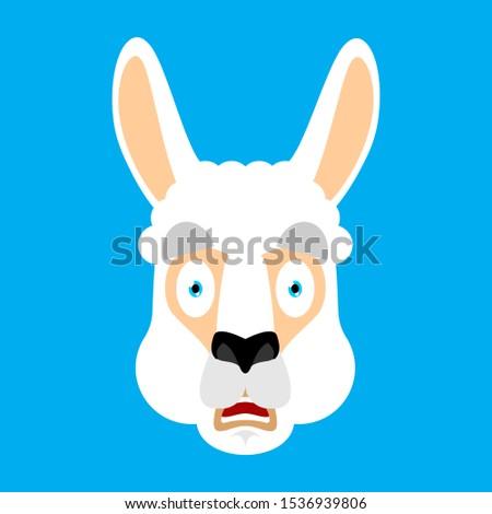Alpaka ijedt omg arc avatar állat Stock fotó © popaukropa