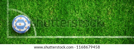 Football in argentinian colours against closed up view of grass Stock photo © wavebreak_media