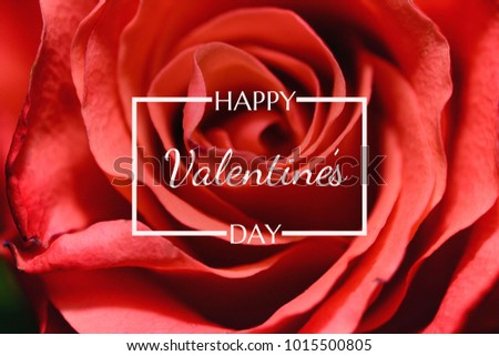 be my valentine happy valentines day red pink and orange balloon in form of heart with ribbon vec stock photo © olehsvetiukha