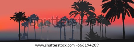 Background of tropical nature, silhouette of coastal palm trees  Stock photo © amok