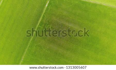 Rice Terrace Aerial Shot. Image of beautiful terrace rice field Stock photo © galitskaya