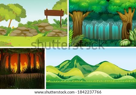 Vier unterschiedlich natürlichen Katastrophe Wald Karikatur Stock foto © bluering