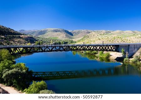 railway viaduct near border of portugal castile and leon spain stock photo © phbcz