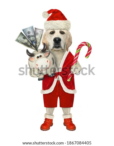 New year or Christmas greeting card with dog, and money box pig Stock photo © heliburcka