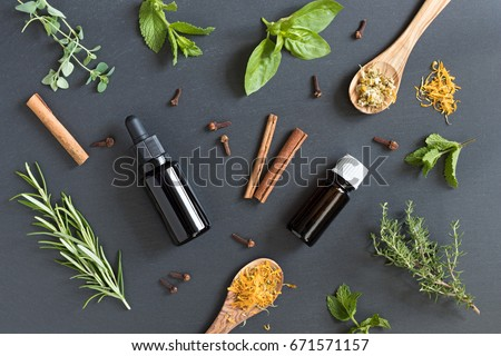 Selection of essential oils and herbs on a dark background, top view Stock photo © madeleine_steinbach