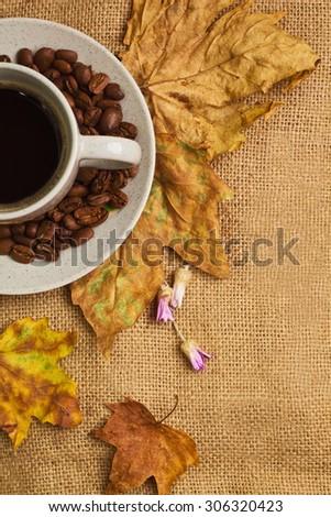 Caldo Cup caffè fiori Foto d'archivio © StephanieFrey