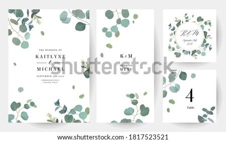 Foto stock: Verde · cartão · folhas · vetor · aquarela · conjunto