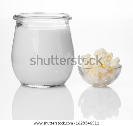 Milk kefir grains in spoon. Yeast bacterial fermentation starter Stock photo © joannawnuk