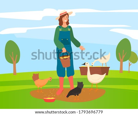 Woman is feeding chickens and goose on farm. Female farmer worker is giving food to domestic animals Stock photo © robuart