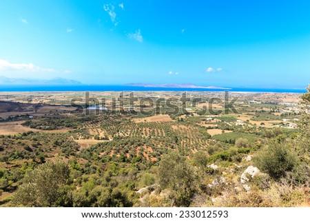 Olive groves around Kardamena as seen from the fortress Antimachia. Stock photo © wjarek