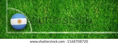 Football Argentine couleurs fermé up vue Photo stock © wavebreak_media