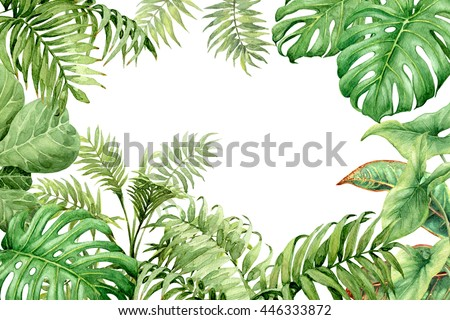 Watercolor background with tropical leaves drawing Frame border  Stock photo © Margolana