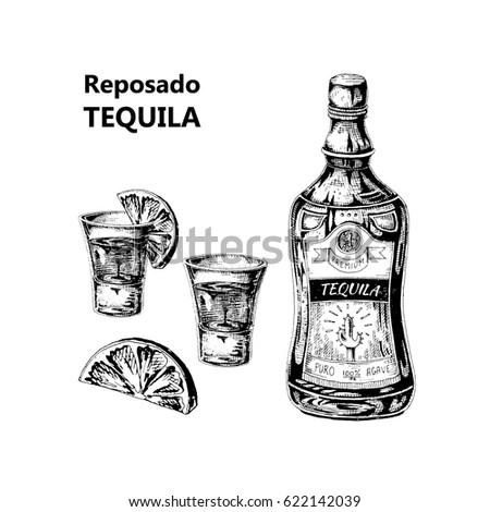 Boceto botella tequila gafas rebanada cal Foto stock © Arkadivna