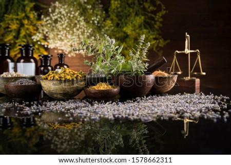 Alternative health, fresh herbal and mortar in black mirror back Stock photo © JanPietruszka