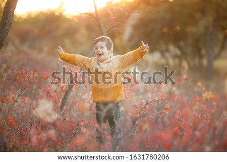 A child in a yellow sweater stands in a clearing with dry grass shouting and waving his hands Stock photo © ElenaBatkova