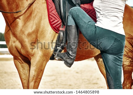 beautiful legs in black leather horseman boots with riding-crop Stock photo © dolgachov