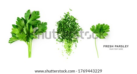 Vers bos peterselie voedsel achtergrond roze Stockfoto © M-studio