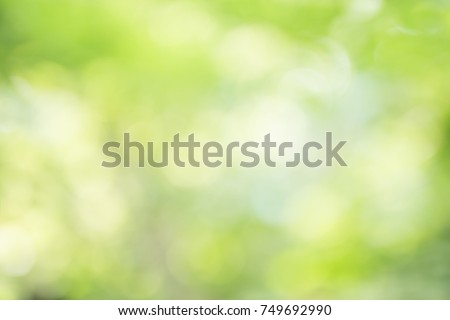 green spring forest blurred natural background with bokeh effec stock photo © artjazz